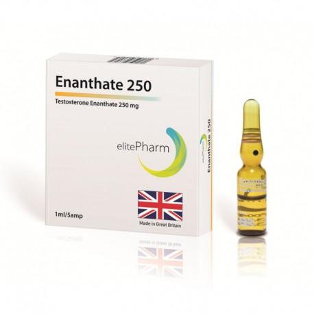 Testosterone Enanthate 250 Elite Pharm 250mg/1ml - (10ml)