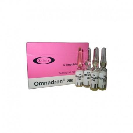 Omnadren 250, 1 Amp ml (250 mg / amp)